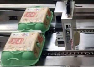 Marcatura a getto di inchiostro sulle scatole delle uova